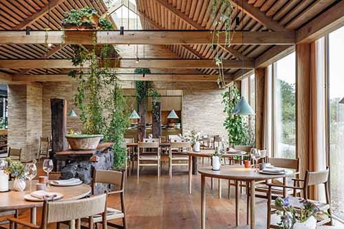 noma-interiors-restaurant